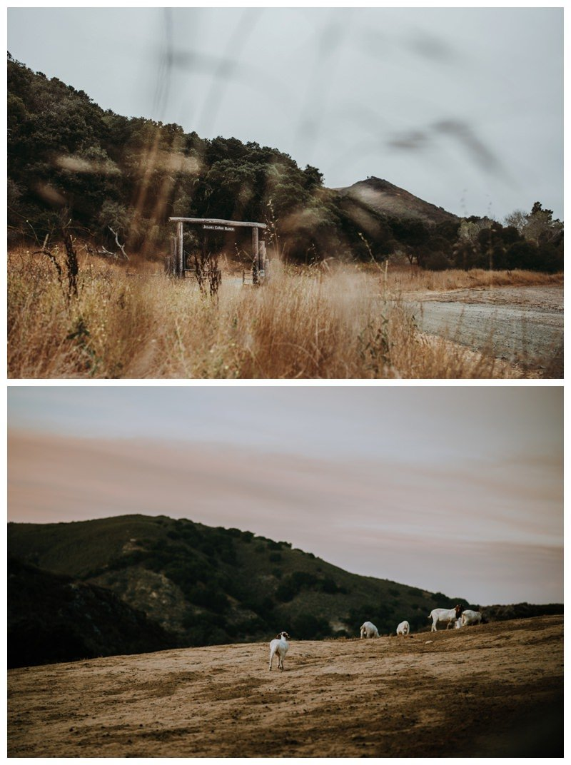 jamala canon ranch wedding