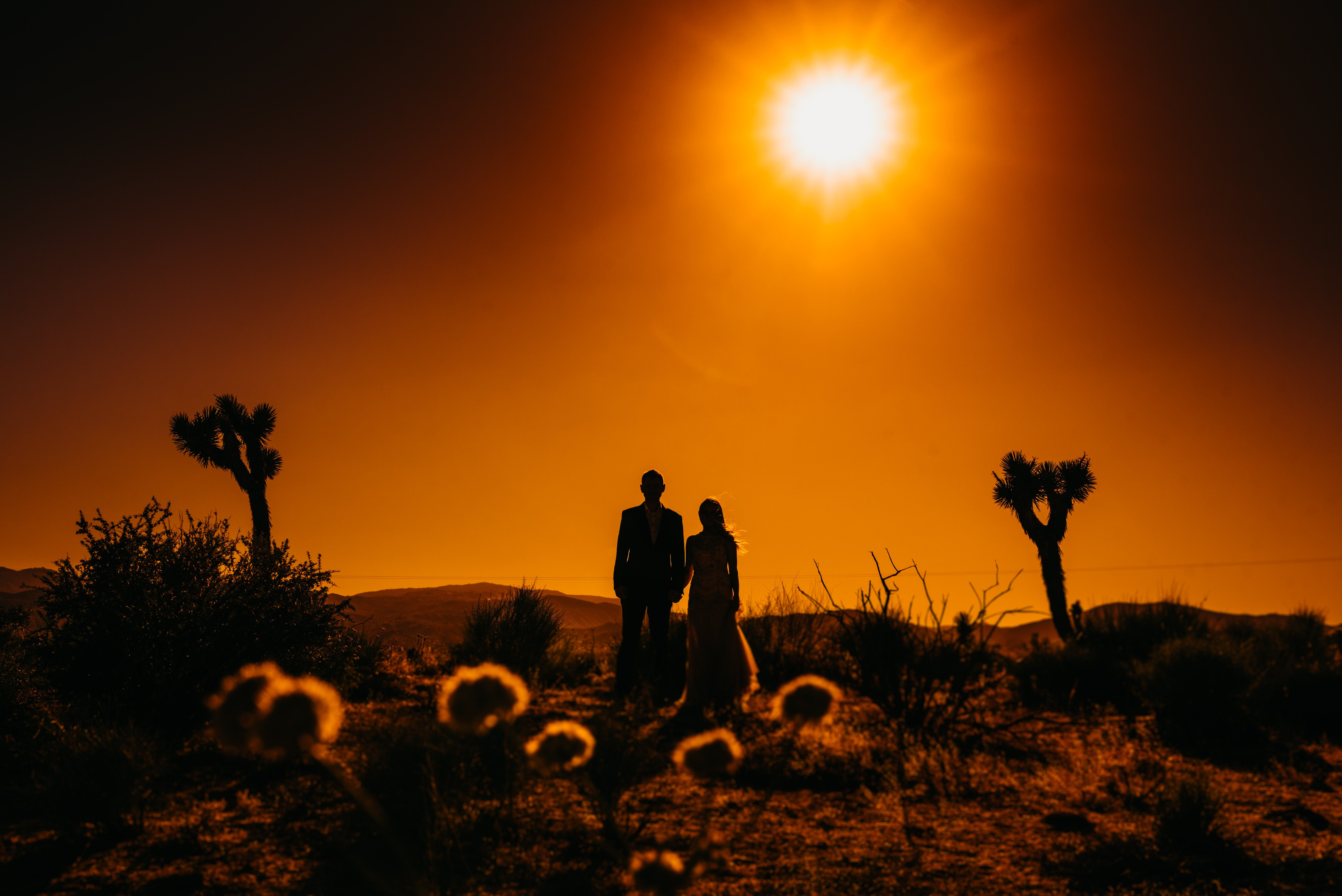 los angeles wedding photographer, joshua tree wedding, the ruin wedding